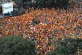 ¿Una última oportunidad para un partido identitario, social-patriota o populista español?